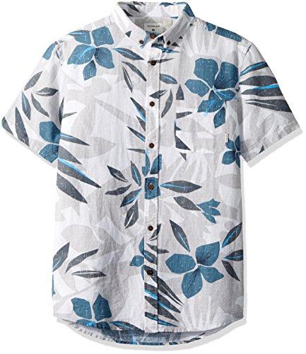 Quiksilver Herren Sslinenprintshi Woven Shirt, X-Large, Sleet Linen (Herren Woven Shirt Quiksilver)