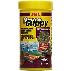 JBL Alleinfutter für lebendgebärende Aquarienfische, Flocken 250 ml, NovoGuppy 30176
