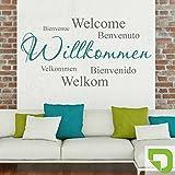 DESIGNSCAPE® Wandtattoo Willkommen in verschiedenen Sprachen - Zweifarbiges Willkommen Wandtattoo 140 x 74 cm (B x H) Farbe 1: lindgrün DW803074-L-F16