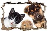 Pixxprint 3D_WD_S2222_92x62 witziges Trio aus Hund Katze und Meerschwein Wanddurchbruch 3D Wandtattoo, Vinyl, bunt, 92 x 62 x 0,02 cm