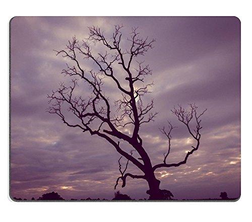 luxlady Gaming Mousepad Bild-ID: 34613877Vintage Baum Silhouette Landschaft Hintergrund