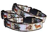Halsband Dackel Hundehalsband Langhaar und Kurzhaar Teckel Nylon ausgefallen braun verstellbar Halsung 30 - 40 cm x 2 cm breit