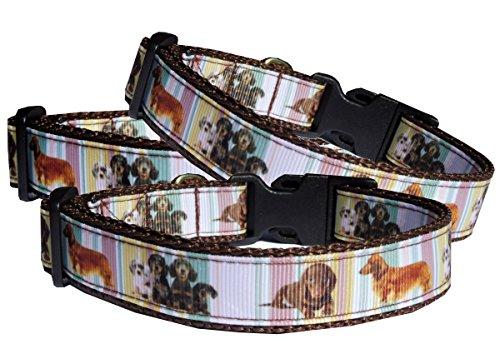 Halsband Dackel Hundehalsband Langhaar und Kurzhaar Teckel Nylon ausgefallen braun verstellbar Halsung 30 - 40 cm x 2 cm breit - Halsband Leder Auto Mantel