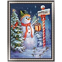 Rawuin 5D Diamond Painting Xmas Snowman Embroidery DIY Cross Stitch Home Decor Art Craft (#601)