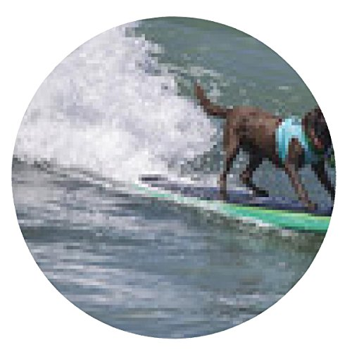 tappetino per mouse Surf Dog - il