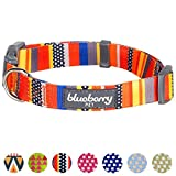 "Blueberry Pet Nautical Flags Inspired Designer Basic Dog Collar, Neck 14.5""-20"", Medium, Collars for Dogs"