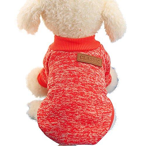 Hunde Sweatshirt Pullover Hoodie Jacke Mantel Hundebekleidung Herbst Winter Warm Puppy Kostüm Welpe Pullover (M, Rot)