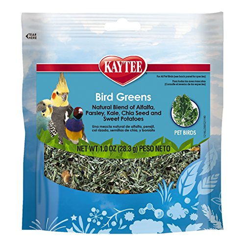 Kaytee Products Inc-Foraging Treat Bird Greens-All Birds- Chia/sweet Pota 1 Ounce