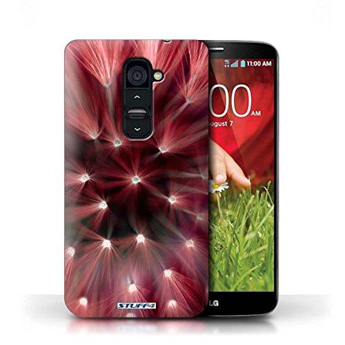 Kobalt® Imprimé Etui / Coque pour LG G2 / Rose conception / Série Couleur/Lumière Fleur Rouge
