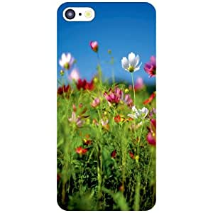 Apple iPhone 5C Back Cover - Bunch Designer Cases