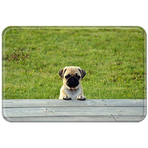 Violetpos Fußmatte Mops Hunde Welpen Fußmatten Mat für Innen & Außen 40 x 60 cm