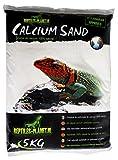 Rettili Planet Lettiera Sabbia di Calcio per terrario Sand Sahara Cream 5kg 3Bustina