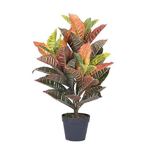 Vickerman t161130Real Touch Croton Baum in Topf, 76,2cm