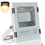 Foco LED 30w con luz cálida 2700K IP65