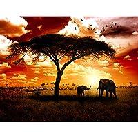Suchergebnis auf Amazon.de für: Afrika - Tapeten / Malerbedarf ...