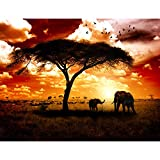 Fototapete Afrika Elefanten 396 x 280 cm Vlies Wand Tapete Wohnzimmer Schlafzimmer Büro Flur Dekoration Wandbilder XXL Moderne Wanddeko - 100% MADE IN GERMANY - Runa Tapeten 9110012a