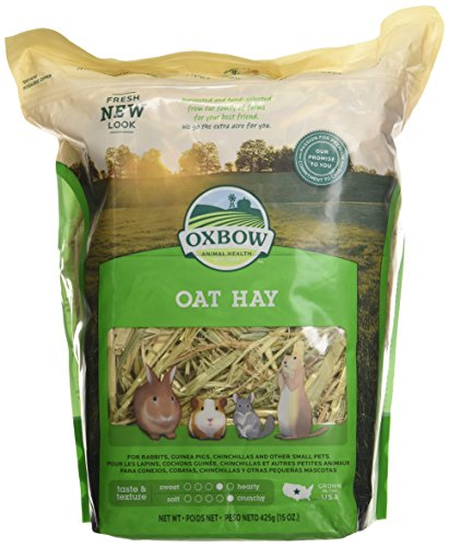 Oxbow Bene Terra HAY for Rabbits Guinea Pigs Chinchillas OAT HAY 425 g