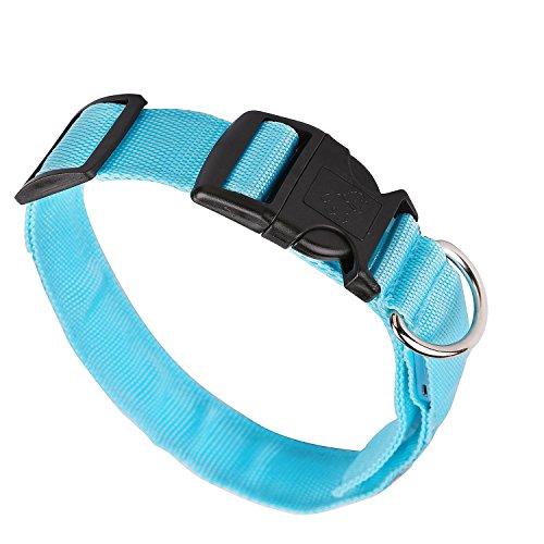 iManson LED Hundehalsband Light - Hunde Leuchthalsband Universell - 3 Modi - L Code(Blau)