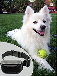 iClever® Humane Medium Large Anti Bark Collar--Electronic Dog Collar with Sound Warning & Static Shock to stop dog barking by iClever®