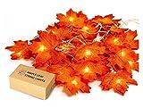 Ahornblatt Lichterketten,HENMI Maple Leaf Lichterketten, Lichterkette Ahornblätter, Herbst Saison 20-LED Lichterkette, Urlaub Beleuchtung Dekorationen, Thanksgiving & Weihnachtsbeleuchtung (Warmweiß)