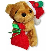 Natale Orso Bruno