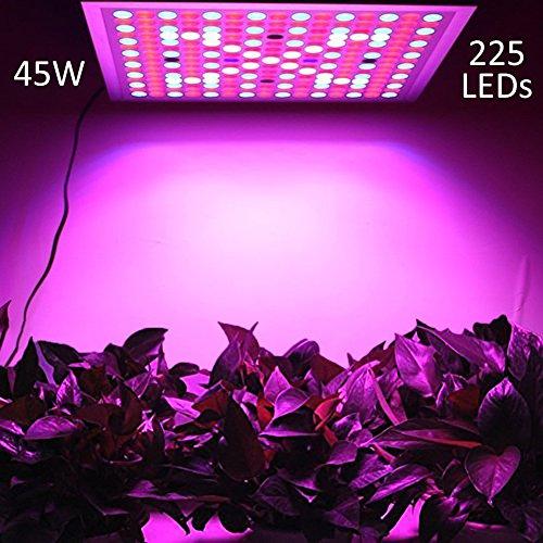 Licht Panel (LED Pflanzenlampe, LENDOO Pflanzenleuchte Ultra dünn, 45W 225 LEDs Blau & Rot Licht Einstellbare Wachsen Lichter Innengarten Pflanze wachsen Licht Hängeleuchte für Zimmerpflanzen, Blumen und Gemüse)