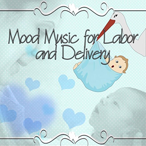 The Complete Pregnancy Guide with Indian Classical Music ...