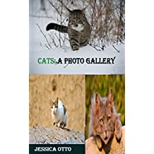 CATS: a PHOTO  GALLERY (Italian Edition)