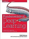 #3: Fundamentals of Deep Learning: Designing Next-Generation Machine Intelligence Algorithms