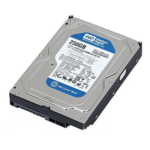 disque-dur-35-250go-sata-western-digital-caviar-blue-wd2500aakx-7200-rpm-16mo