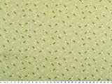 Zanderino ab 1m: Digitale Baumwoll-Popeline, Papageien,