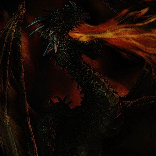 Drachen Feuer Spucken Fantasie Monster Feuer Damen Schwarz S-2XL Muskelshirt   Wellcoda Grau