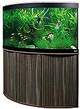 Aquariumkombination Fluval Venezia 190 Amazonas mit LED Beleuchtung, Heizer, Filter und Unterschrank dunkelbraun