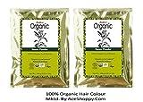 #8: Radico Organic Henna Powder - 150g (2 Unit)