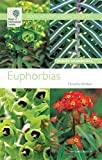 Euphorbias (Royal Horticultural Society Wisley Handbooks)