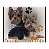 Best Yorkie Beds - CafePress - Yorkshire Terrier Double Trouble Pil Review