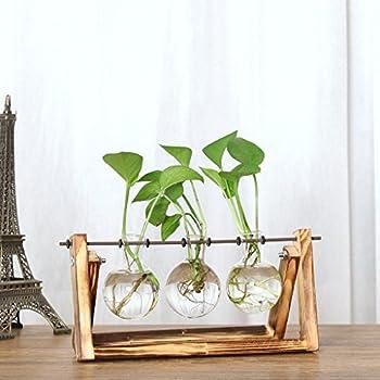 3af29b00c22f Gaddrt Plant Transparent Vase Creative Hydroponic Wooden Frame Coffee Shop  Room Decr 28x14cm