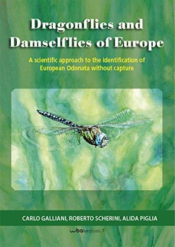 Dragonflies and damselflies of Europe. A scientific approach to the identification of european odonata withour capture (WBA Handbooks) por Carlo Galliani