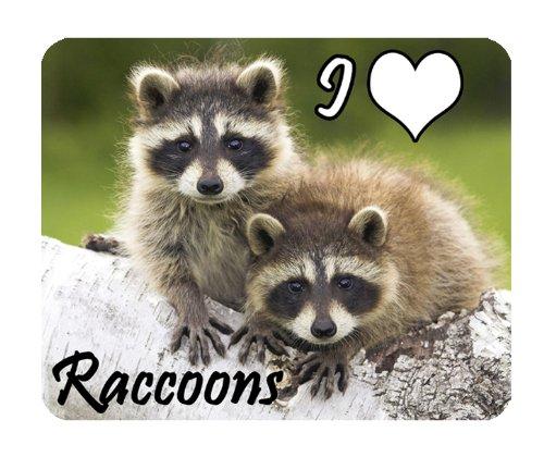 raton-laveur-tapis-de-souris-nature-i-love-ratons-laveurs