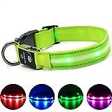 Leuchthalsband für Hunde Aufladbar LED Hundehalsband 100% Wasserdicht Blinkende Lichter mit USB von MASBRIL(L, 50cm, Grün)