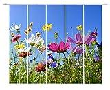 emotiontextiles FERNWEHKOLLEKTION 10690 mehrteilig Flächenvorhang Landschaft 5er-Set bunt Blumen Wiese Sonderanfertigung Schiebevorhang Blickdicht 85% Druck rückseitig prozentual sichtbar