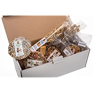 SURPRISE BOX XL - Set von 7 beliebtesten Snacks und Leckereien für alle Nager und Kaninchen. Mehr als 1500 Gr hochwertiger Ernährung.