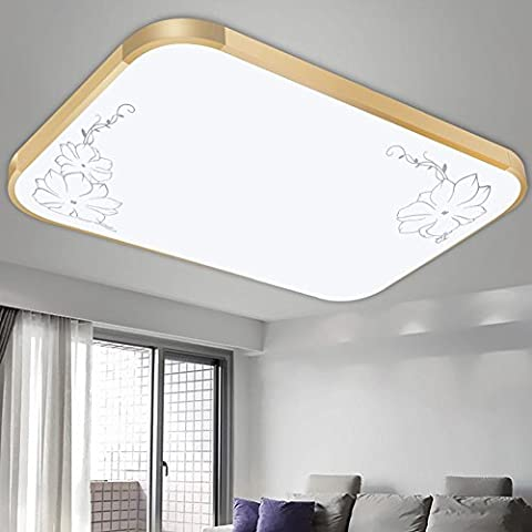 NHD-Modern minimalist aluminum acrylic LED ceiling lamp