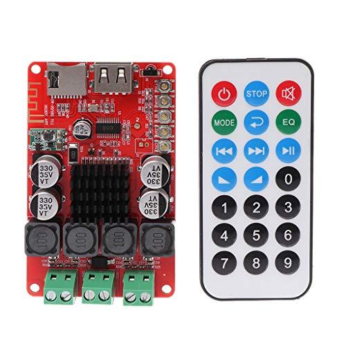 Werst TPA3116 High Power Digital Audio Verstärker Board TF-Karte U Disk Player FM Radio Bluetooth Empfänger mit Fernbedienung Powered Woofer