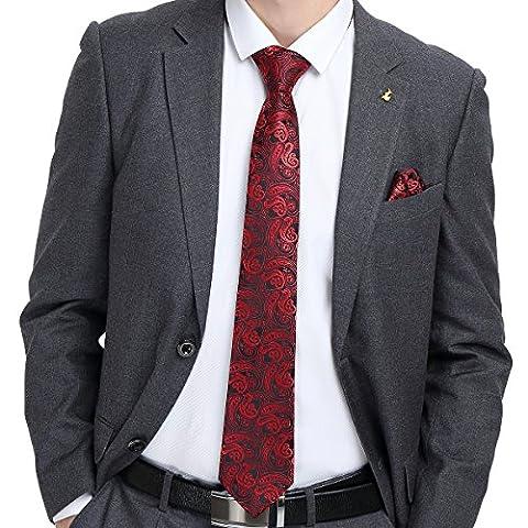 Hi-Tie Paisley Red Silk Mens Necktie Set