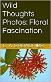 Wild Thoughts Photos:  Floral Fascination