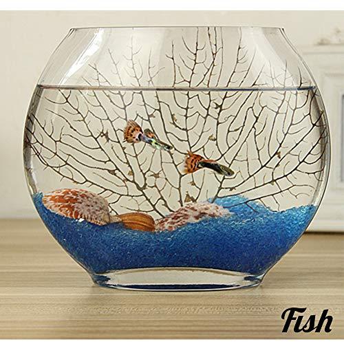 GWFISH Escritorio pequeño Vidrio Plano Fish Bowl