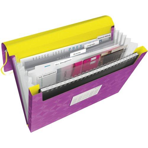 Leitz Sortierer Faltenbalg 6 Compartments - lila