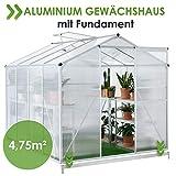 Juskys Aluminium Gewächshaus mit Fundament | 4,75 qm | 190 × 253 cm | 1 Dachfenster & Schiebetür | 4 mm Platten | Garten...