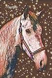 Taccuino: equitazione cavalli allievo scolastico scolastico notebook allineati studente